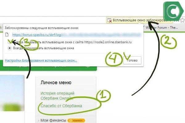 Если браузер заблакировал всплывающее окно - выполняем пункты 1-4 на рисунке