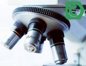 Изображение - Управление активами биотехнологии сбербанк pif-biotehnologii-300x231
