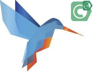 Быстрый перевод колибри