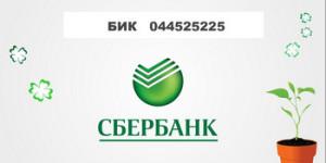 Бик 044525225 — верный реквизит ПАО Сбербанк России