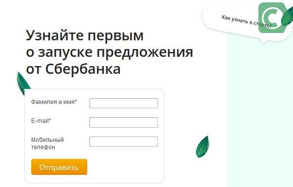 регистрация своего дела в сбербанке